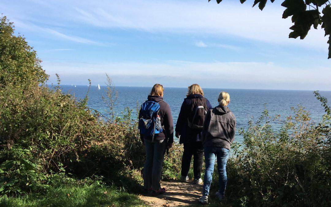 shift of perspective walk – die Premiere
