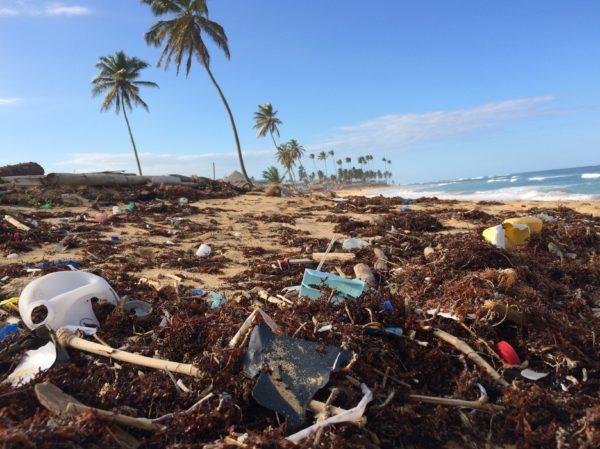 Wie Plastikmüll vermeiden?